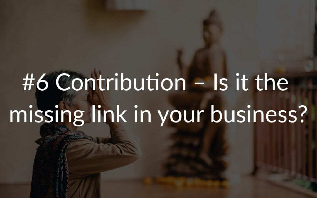 #6 Contribution – Is it the missing link in your business?